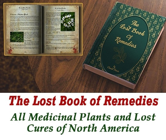 My The Lost Book Of Remedies Book