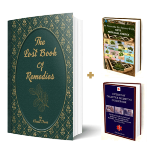 The Lost Book Of Remedies 2020 Review